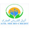 ATIL MICROCREDIT